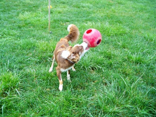 Brigitte, Playing Ball