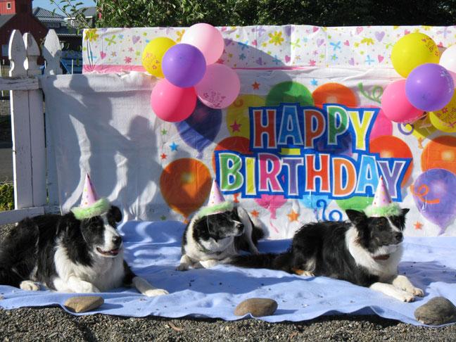 Holly's Birthday Party!